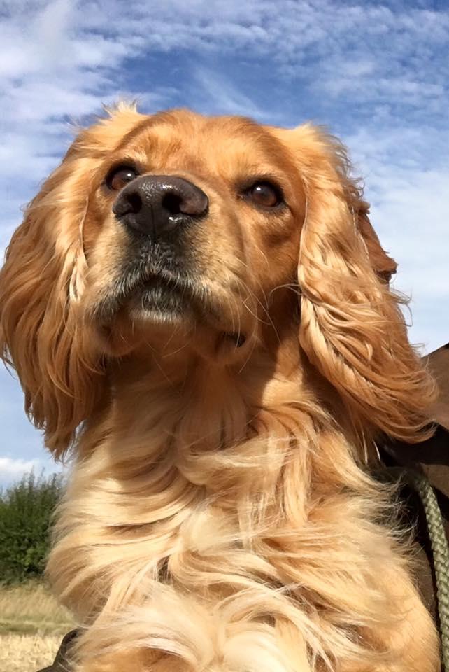 Closeup of Max