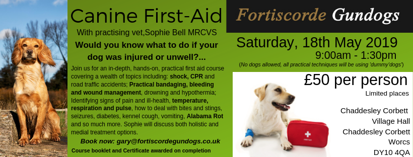 Canine First-Aid Training