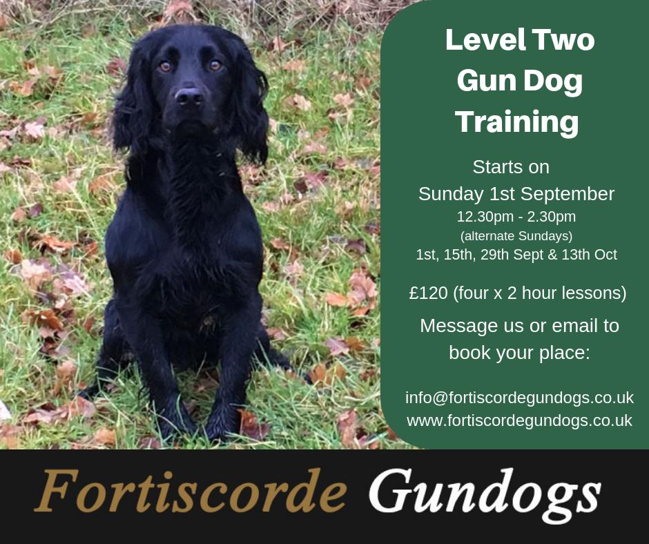 Level Two Gundog Training